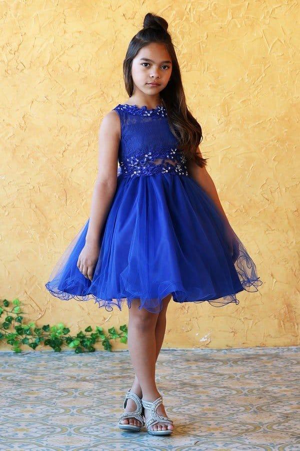 D791 royal blue