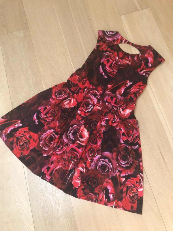 Dorothy Perkins Roses back