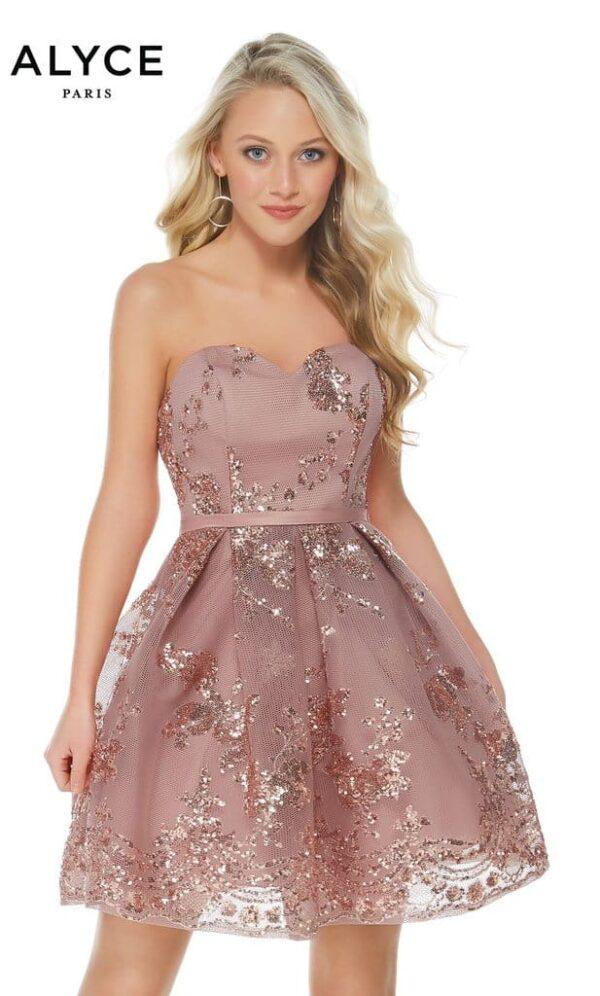 Alyce Paris Dress Style 2650 in Rosewood   Silhouette London