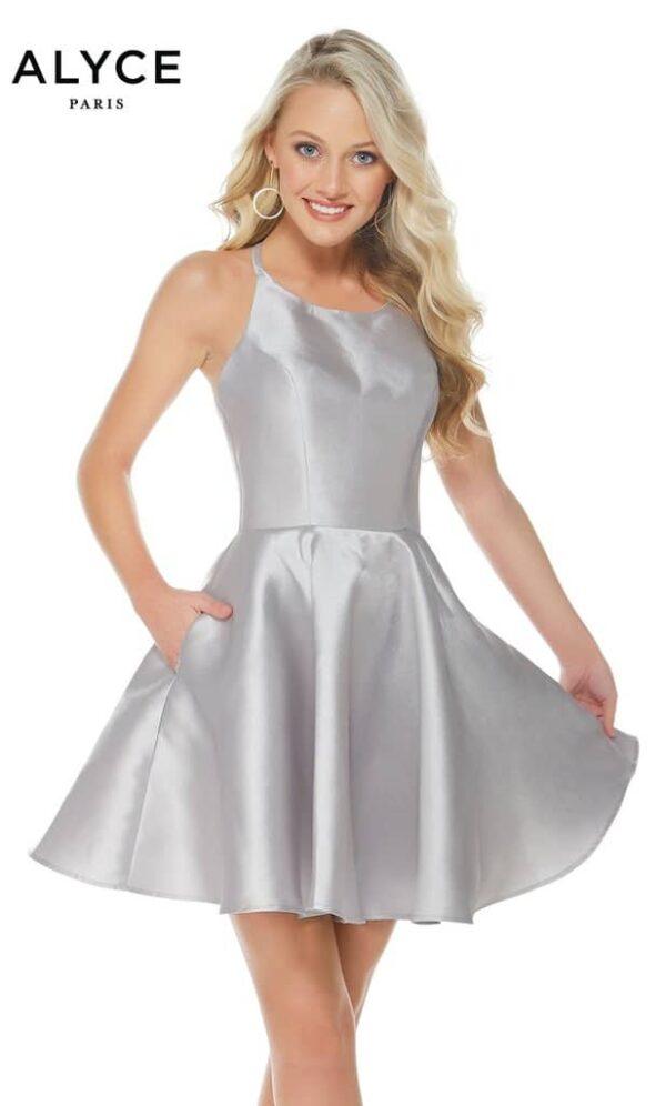Alyce Paris Dress Style 3703 - Silver